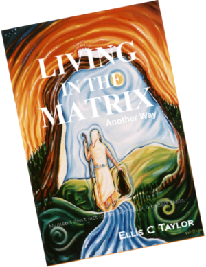Living in the matrix by Ellis Taylor. Illustration: Cathar Portal by Neil Hague.