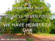 hearts of oak400