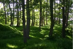 Thee Mound ov Krekja2
