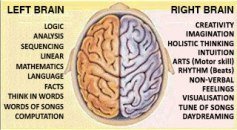 left_brain_right_brain1
